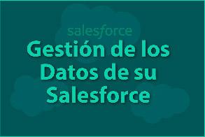 Gestión de los Datos de su Salesforce